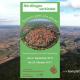 Nördlingen Donau-Ries Veranstaltungen Demenz Veranstaltungskalender Welt Alzheimertag 2017 Gesundheitsregionplus